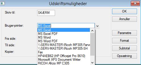 Excel C5_Udskriftsmuligheder_ERPsupporten.dk