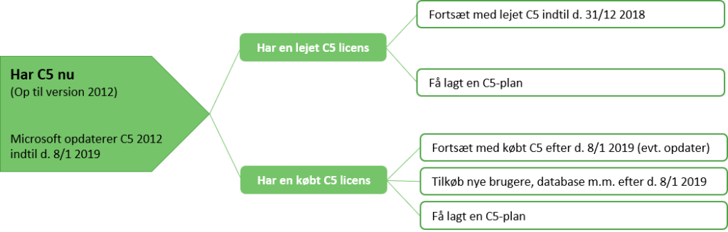 C5 leje eller eje - hvilke muligheder har du_ERPsupporten